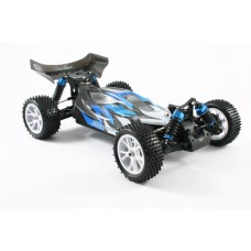 1/10 BRUSHED BUGGY 4WD RTR 2.4GHZ WATERPROOF